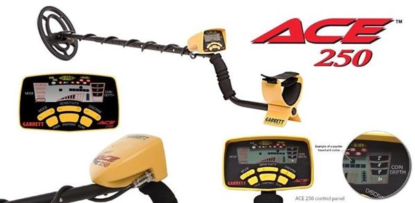 Garrett ACE™ 250 Metal Detector security products in  (South Africa)