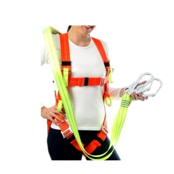 Safety Harness security products in  (South Africa)