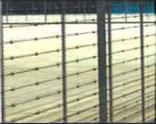 Taut Wire / Decorative Fence / Sensor Grid       Exceptional Performance security products in  (South Africa)